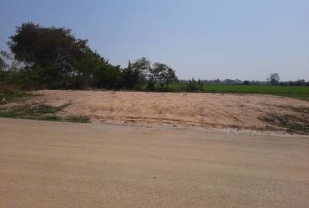 For Sale Land 344 sqm in San Kamphaeng, Chiang Mai, Thailand