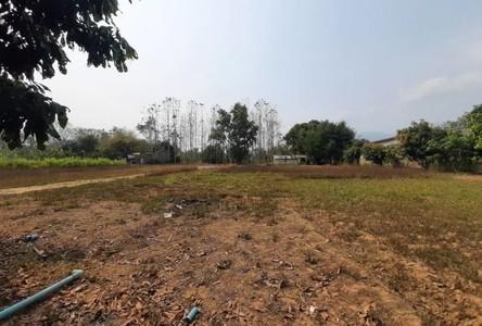For Sale Land 4,584 sqm in Mae Rim, Chiang Mai, Thailand