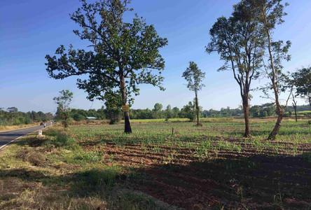 For Sale Land 100 sqwa in Mueang Roi Et, Roi Et, Thailand