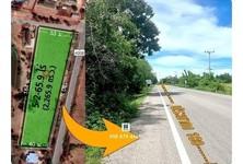 For Sale Land 9,064 sqm in Sam Roi Yot, Prachuap Khiri Khan, Thailand