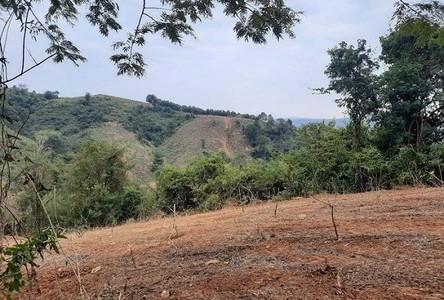 For Sale Land 23-2-5 rai in Lom Kao, Phetchabun, Thailand