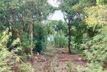 For Sale Land 16,960 sqm in Ban Pho, Chachoengsao, Thailand