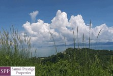 For Sale Land 11,403.2 sqm in Surat Thani, South, Thailand