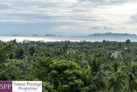For Sale Land 484 sqm in Ko Samui, Surat Thani, Thailand