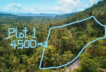 For Sale Land 4,500 sqm in Ko Samui, Surat Thani, Thailand