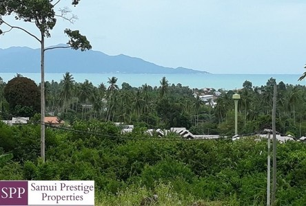 For Sale Land 3,200 sqm in Ko Samui, Surat Thani, Thailand