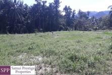 For Sale Land 400 sqm in Ko Samui, Surat Thani, Thailand