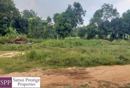 For Sale Land 480 sqm in Ko Samui, Surat Thani, Thailand