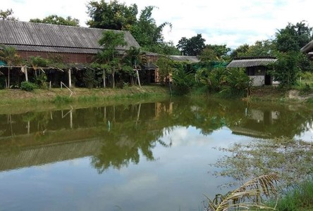 For Sale Land 10,108 sqm in Phrao, Chiang Mai, Thailand