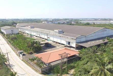 For Rent Warehouse in Mueang Samut Sakhon, Samut Sakhon, Thailand