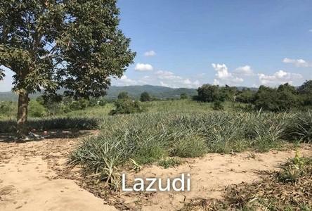 For Sale Land 14,060 sqm in Chiang Khong, Chiang Rai, Thailand