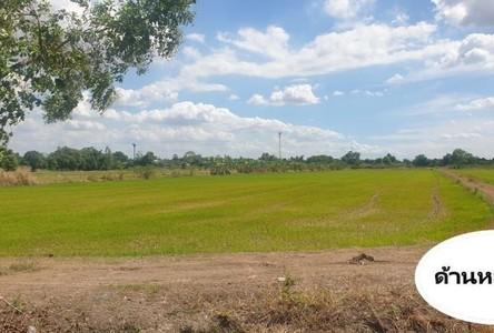 For Sale Land 40,000 sqm in Wang Noi, Phra Nakhon Si Ayutthaya, Thailand
