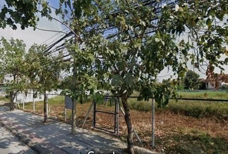 For Rent Land 800 sqm in Sai Mai, Bangkok, Thailand