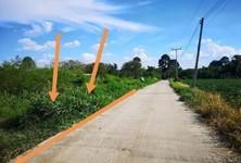 For Sale Land 4,588 sqm in Sikhio, Nakhon Ratchasima, Thailand