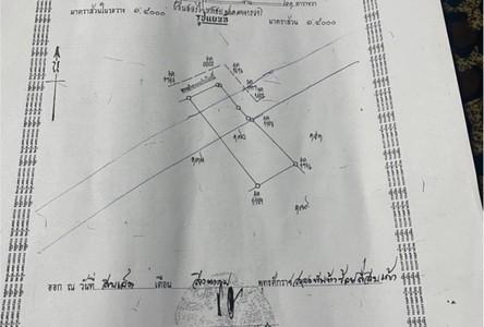 ขาย ที่ดิน 36-1-15 ไร่ อินทร์บุรี สิงห์บุรี