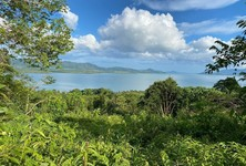For Sale Land 3,200 sqm in Takua Thung, Phang Nga, Thailand