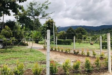 For Sale Land 1,000 sqm in Mueang Nakhon Nayok, Nakhon Nayok, Thailand