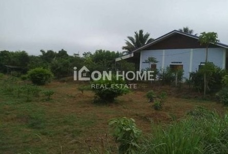 For Sale Land 8,692 sqm in Chiang Khan, Loei, Thailand