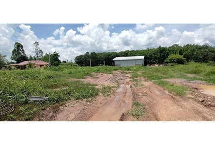 For Sale Condo 2,916 sqm in Thoeng, Chiang Rai, Thailand