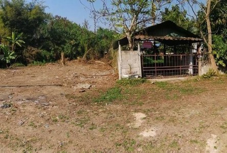 For Sale Land 324 sqm in Saraphi, Chiang Mai, Thailand