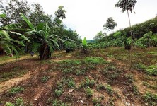 For Sale Land 15,776 sqm in Klaeng, Rayong, Thailand