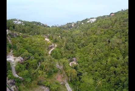ขาย ที่ดิน 676 ตรม. เกาะสมุย สุราษฎร์ธานี