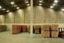 For Rent Warehouse 1,200 sqm in Khlong Luang, Pathum Thani, Thailand