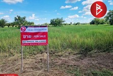 For Sale Land 7,924 sqm in Seka, Bueng Kan, Thailand
