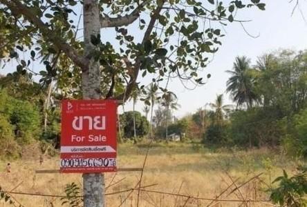 For Sale Land 5,504 sqm in Sawaeng Ha, Ang Thong, Thailand