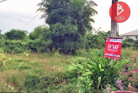 For Sale Land 800 sqm in Si Wilai, Bueng Kan, Thailand