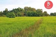For Sale Land 9,872 sqm in Chaloem Phra Kiat, Buriram, Thailand