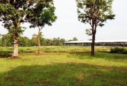 For Sale Land 27,980 sqm in Phibun Mangsahan, Ubon Ratchathani, Thailand