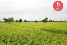 For Sale Land 13,396 sqm in Uthumphon Phisai, Sisaket, Thailand
