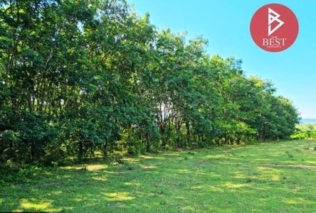 For Sale Land 153,788 sqm in Bueng Kan, Northeast, Thailand