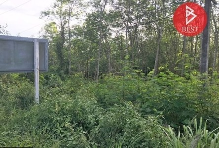 For Sale Land 13,348 sqm in Pa Bon, Phatthalung, Thailand