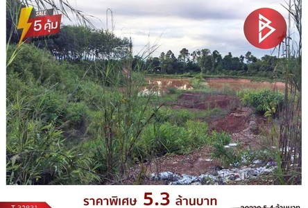 For Sale Land 13,016 sqm in Bueng Kan, Northeast, Thailand