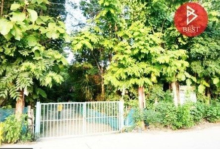 For Sale Land 13,388 sqm in Nong Kung Si, Kalasin, Thailand