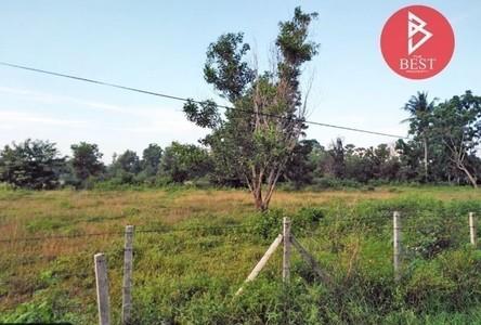 For Sale Land 16,880 sqm in Singhanakhon, Songkhla, Thailand
