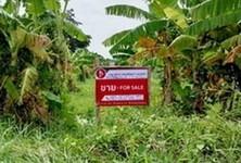 ขาย ที่ดิน 4,124 ตรม. เมืองอุทัยธานี อุทัยธานี