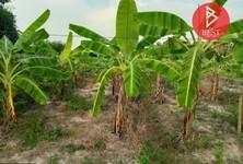 For Sale Land 3,200 sqm in Sawaeng Ha, Ang Thong, Thailand
