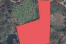 For Sale Land 11,088 sqm in Phu Kradueng, Loei, Thailand