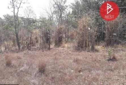 For Sale Land 6,400 sqm in Phibun Mangsahan, Ubon Ratchathani, Thailand