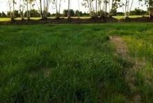 For Sale Land 13,292 sqm in Phayakkhaphum Phisai, Maha Sarakham, Thailand