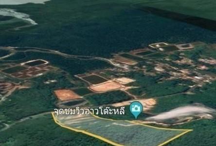 For Sale House 56,000 sqm in Takua Thung, Phang Nga, Thailand