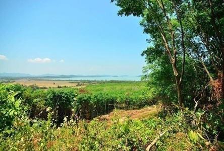 For Sale Land 28,800 sqm in Ko Yao, Phang Nga, Thailand