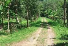 For Sale Land 100,800 sqm in Takua Thung, Phang Nga, Thailand
