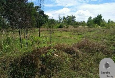 For Sale Land 25,600 sqm in Takua Thung, Phang Nga, Thailand