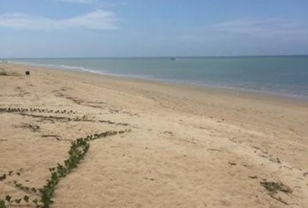 For Sale Land 7,676 sqm in Takua Pa, Phang Nga, Thailand