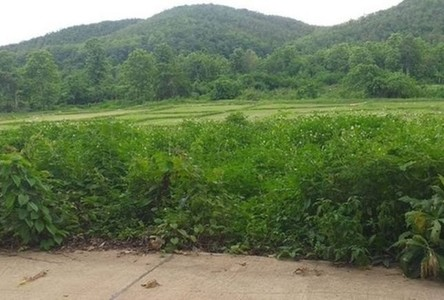 For Sale Land 8,000 sqm in Hang Chat, Lampang, Thailand