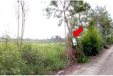 For Sale Land 800 sqm in Nong Suea, Pathum Thani, Thailand